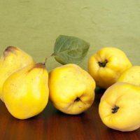 Pastel de membrillo y frutos secos